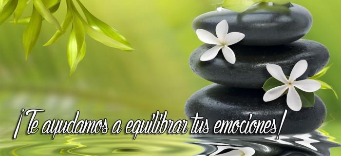 Te ayudamos a equilibrar tus emociones